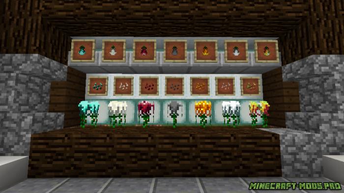 фотография Мод Растения и Цветы