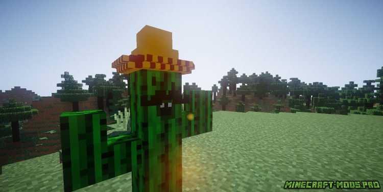 скриншот фото Мод Всё с Кактуса
