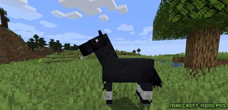 Мод Horse Stats картинки
