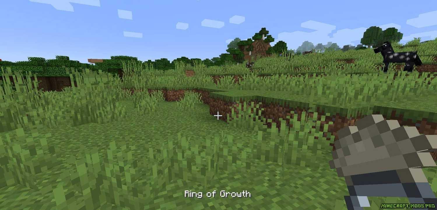 фото Мод Ring of Growth