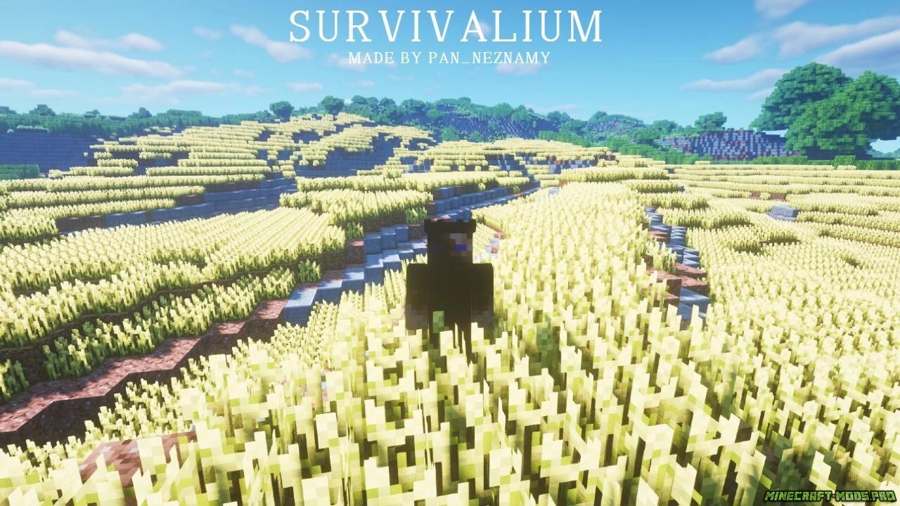 фотография Карта Выживание Survivalium 10кх10к