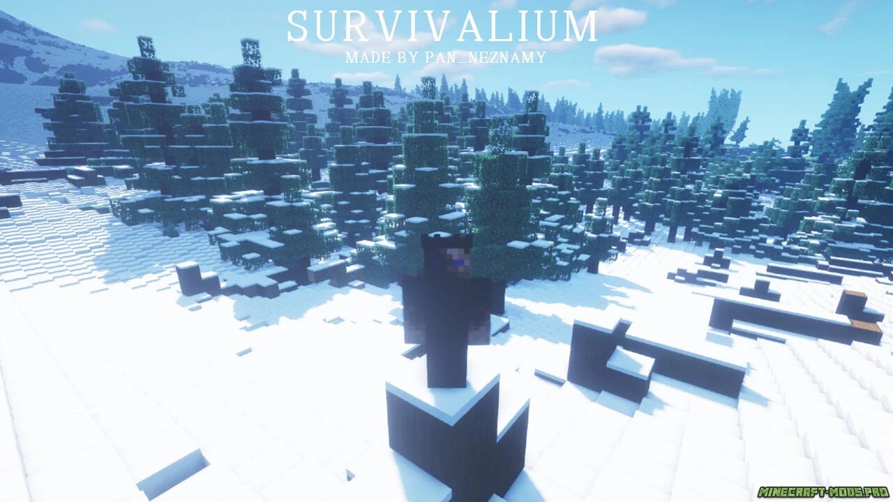 картинка Карта Выживание Survivalium 10кх10к