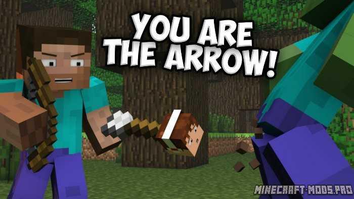 Мод ArrowCam (Видео Стрелы)